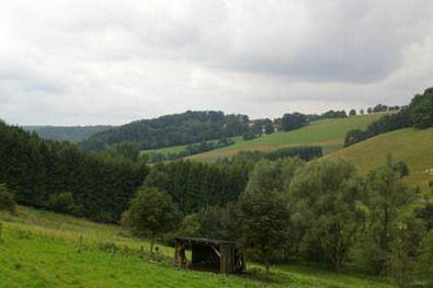Am Rundwanderweg Weiberg-Hardt