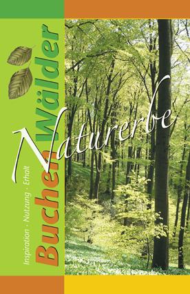 Naturerbe Buchenwälder